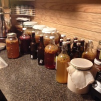 A counter full of ferments!