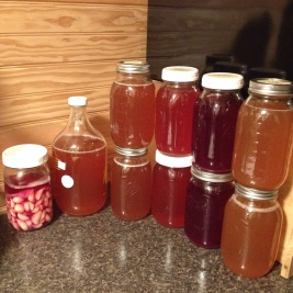 Fermented garlic & my home brew kombucha!